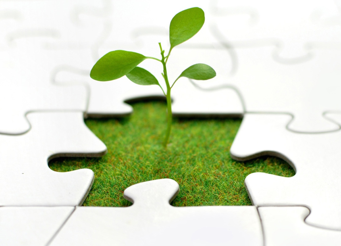 Five Myths About Entrepreneurship-Debunked